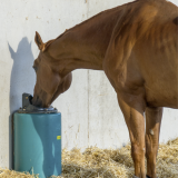 Drinkbakken en watervoorziening