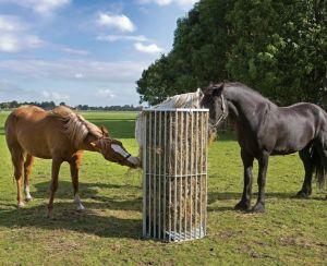 Weide paardenruif voor los hooi