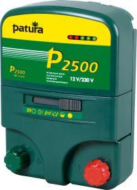 P2500 multifunctioneel apparaat 230V/12V