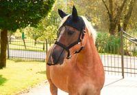 Vliegenhalster/masker Pony