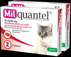Milquantel 16 mg/40 mg Kat Groot 4 tabl. >2kg
