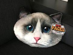 Pet Faces Lappenpop kat