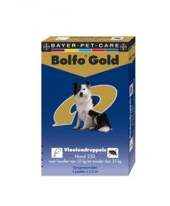 Bolfo Gold Hond 250 >10 kg