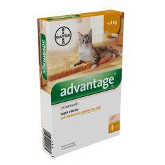 Advantage 40 kat