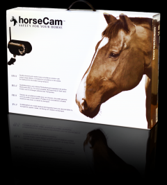 HorseCam