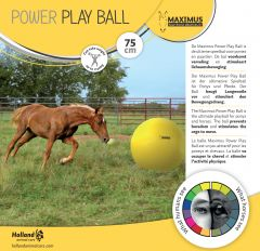 Maximus Power Play Ball 75cm