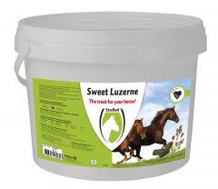 Sweet Luzerne