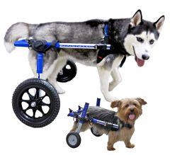Rolstoel Dog Medium/Large Blauw 12-12, Foam, 12-31 kg