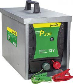 P300 met afgesloten draagbox Compact (max. 84 Ah accu)