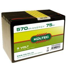 Batterij 9 Volt - 570 Wh 75 Ah, alkaline