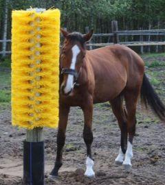 Totem paardenborstel met bodemplaat