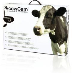 CowCam