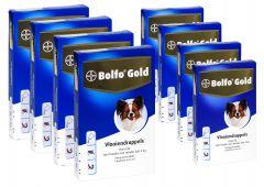 Bolfo Gold Vlooiendruppels Hond 40 4P (tot 4kg)