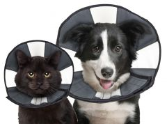 Zencone soft Recovery Collar Small